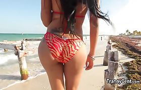 Tgirl in bikini riding massive cock